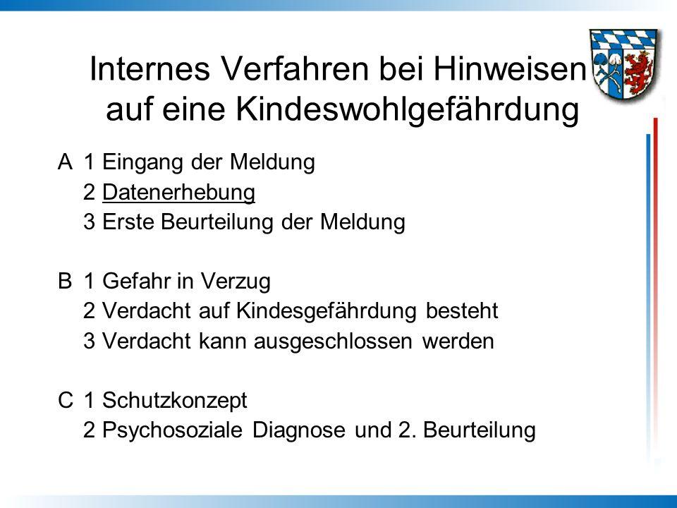 Internes Verfahren bei Hinweisen auf eine Kindeswohlgefährdung