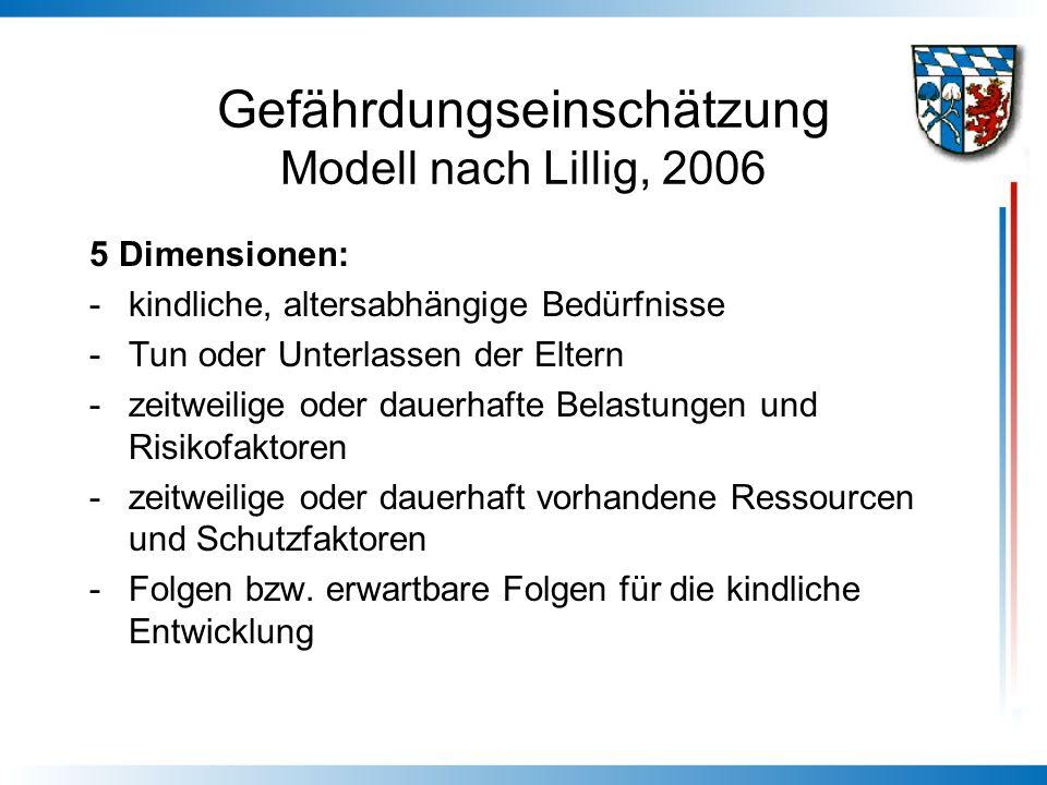 Gefährdungseinschätzung Modell nach Lillig, 2006