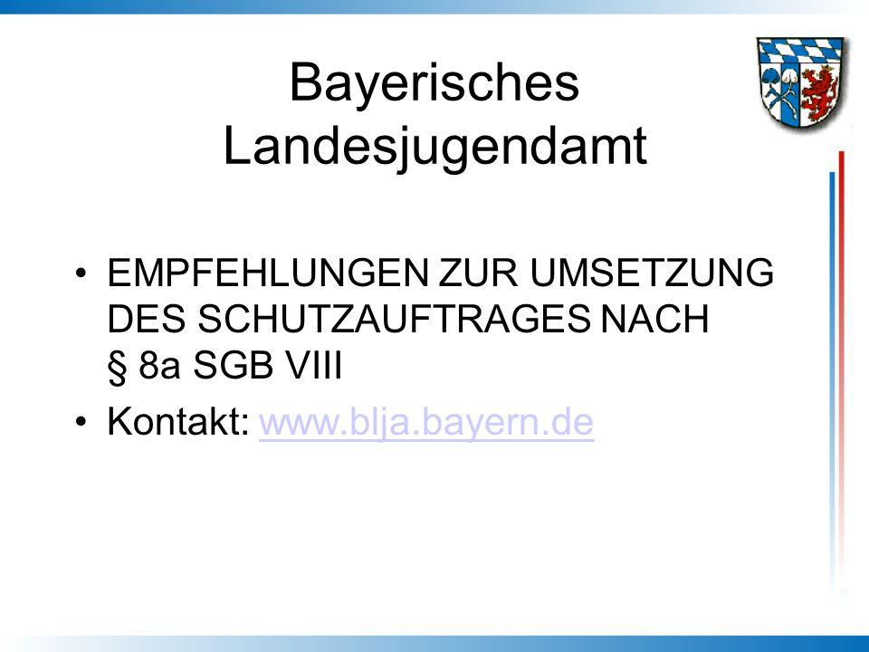 Bayerisches Landesjugendamt