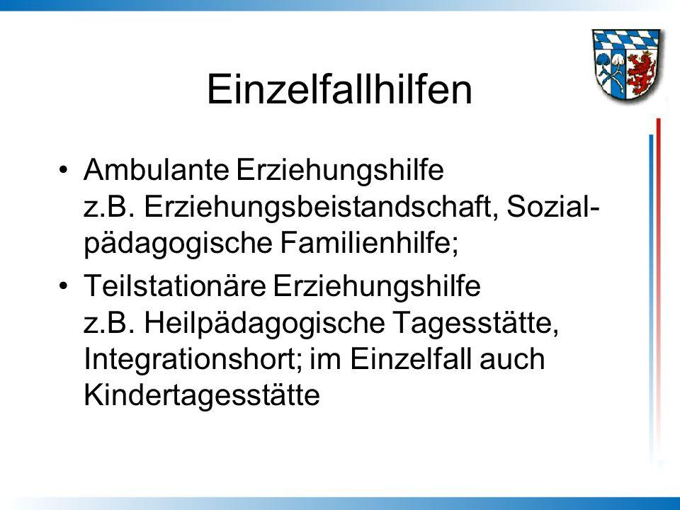 Einzelfallhilfen Ambulante Erziehungshilfe z.B. Erziehungsbeistandschaft, Sozial-pädagogische Familienhilfe;