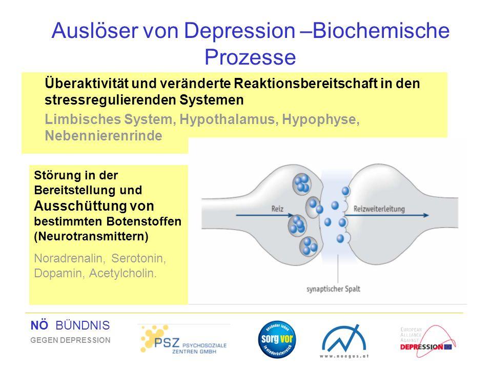Auslöser von Depression –Biochemische Prozesse