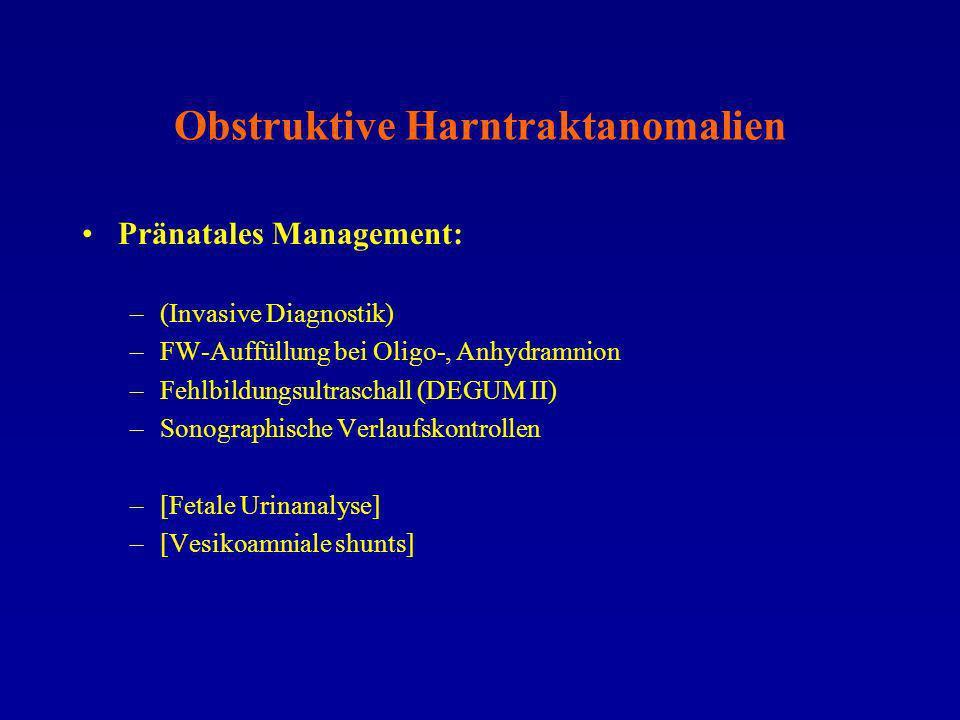 Obstruktive Harntraktanomalien