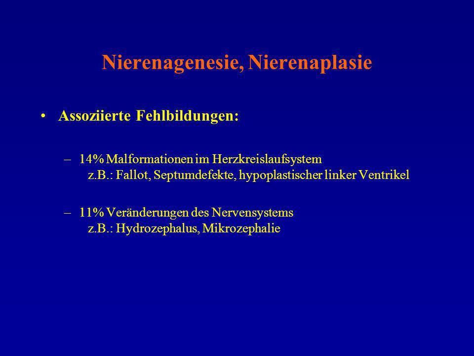 Nierenagenesie, Nierenaplasie
