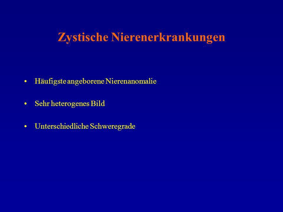 Zystische Nierenerkrankungen