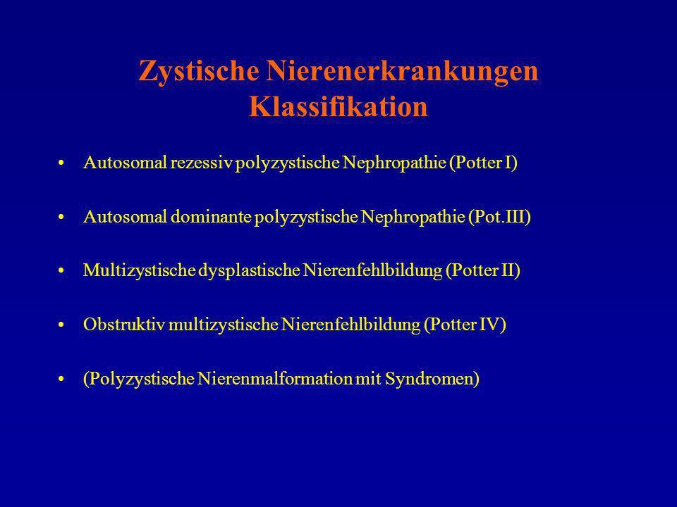 Zystische Nierenerkrankungen Klassifikation