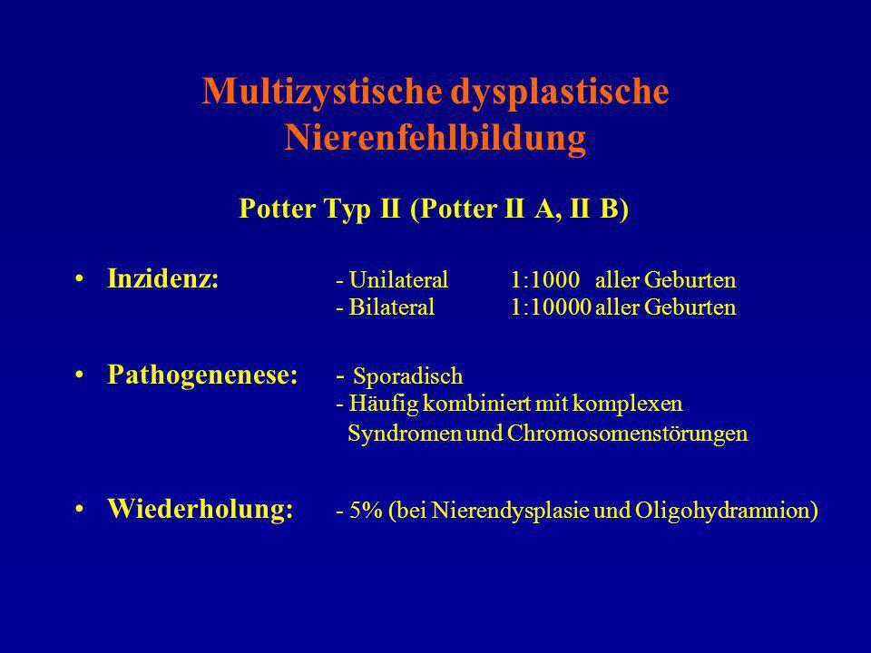 Multizystische dysplastische Nierenfehlbildung