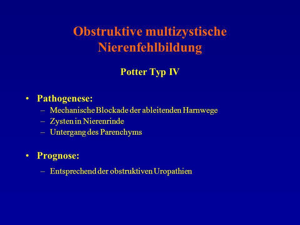 Obstruktive multizystische Nierenfehlbildung