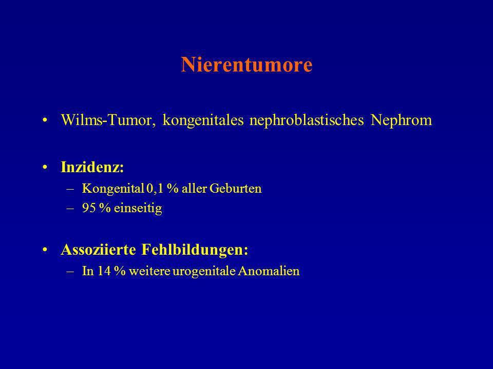 Nierentumore Wilms-Tumor, kongenitales nephroblastisches Nephrom