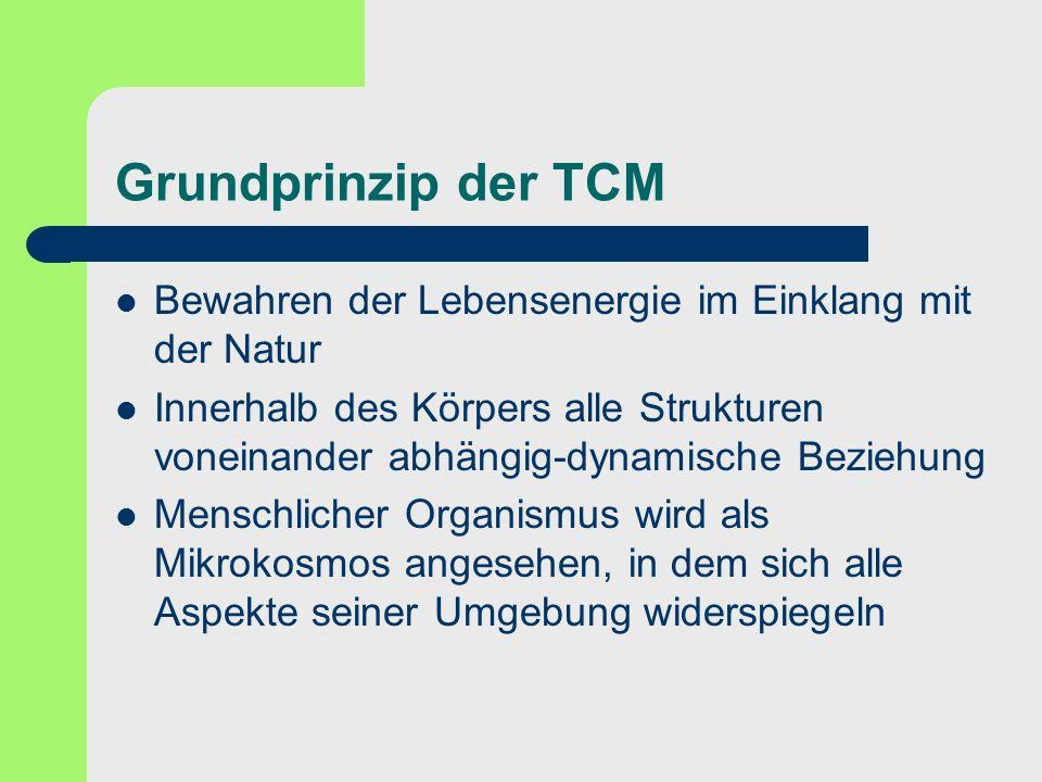 Grundprinzip der TCM Bewahren der Lebensenergie im Einklang mit der Natur.