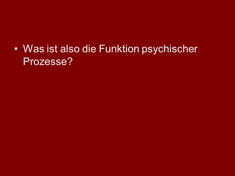 Was ist also die Funktion psychischer Prozesse