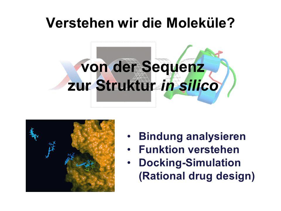 Verstehen wir die Moleküle