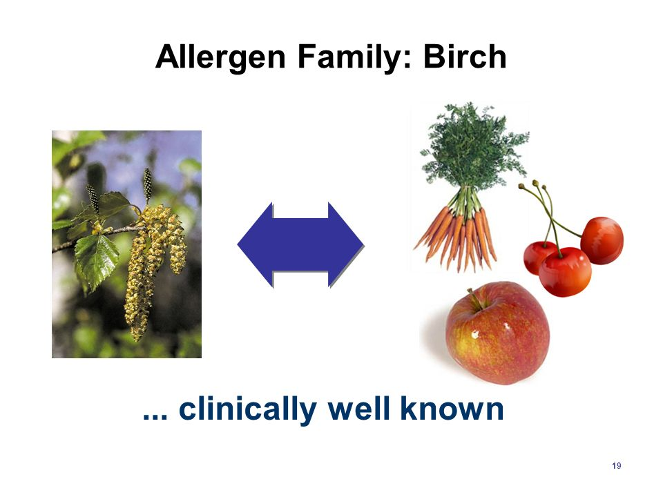 Allergen Family: Birch