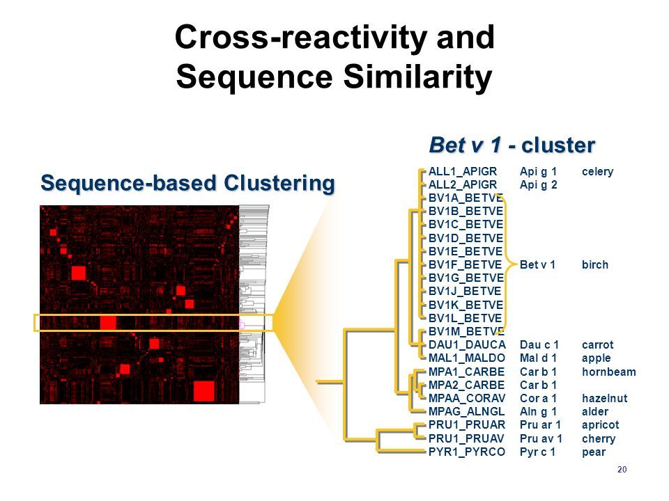 Cross-reactivity and Sequence Similarity
