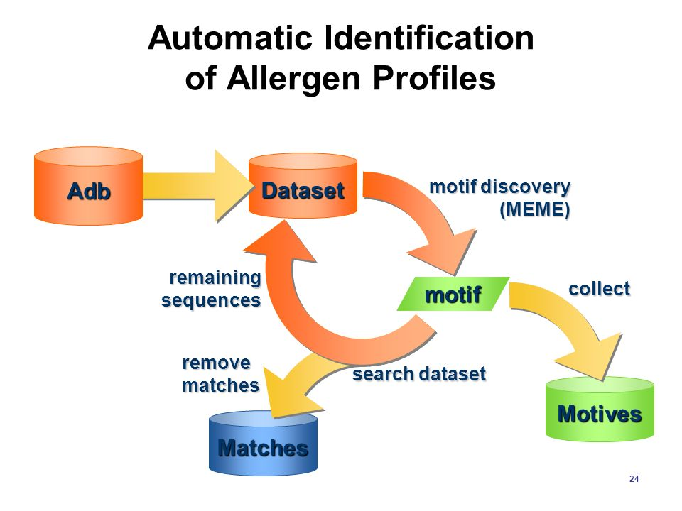 Automatic Identification of Allergen Profiles