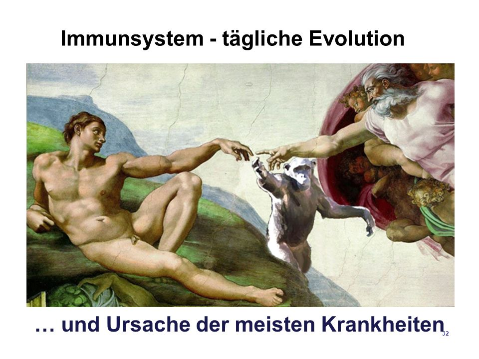 Immunsystem - tägliche Evolution