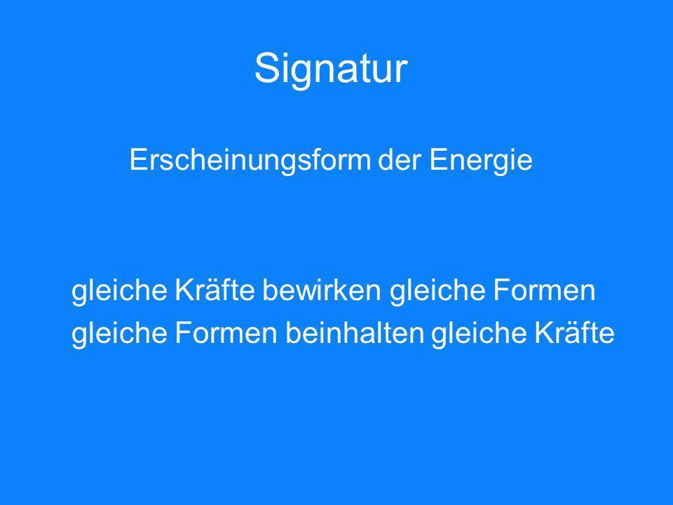 Signatur Erscheinungsform der Energie