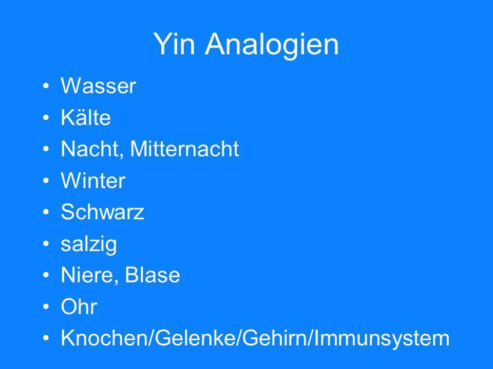 Yin Analogien Wasser Kälte Nacht, Mitternacht Winter Schwarz salzig