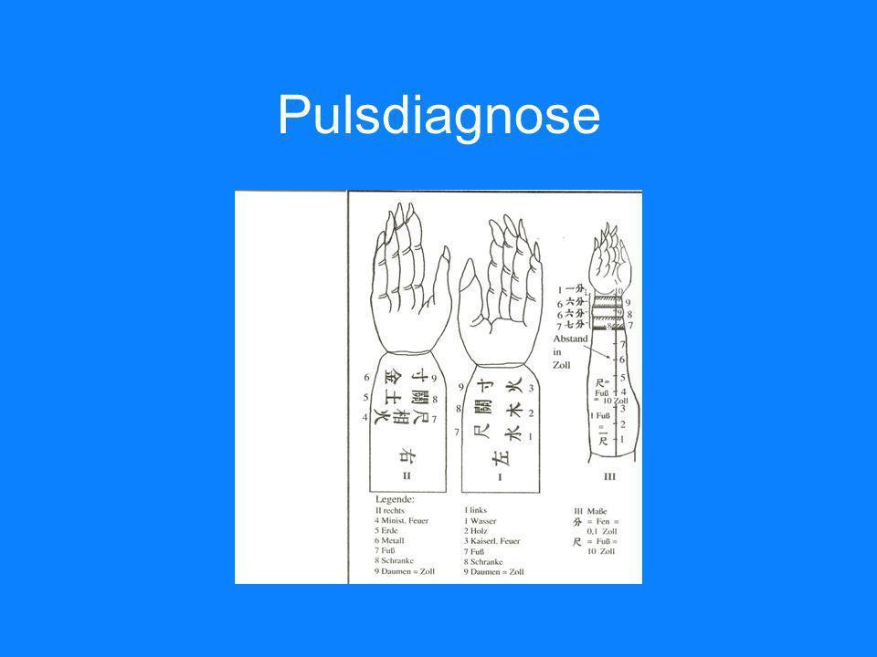 Pulsdiagnose
