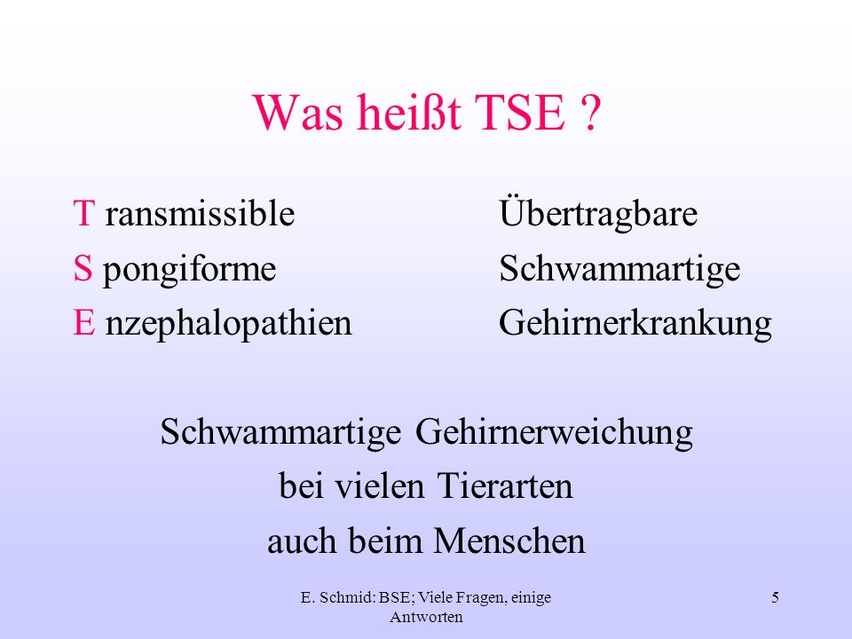 Was heißt TSE T ransmissible Übertragbare S pongiforme Schwammartige