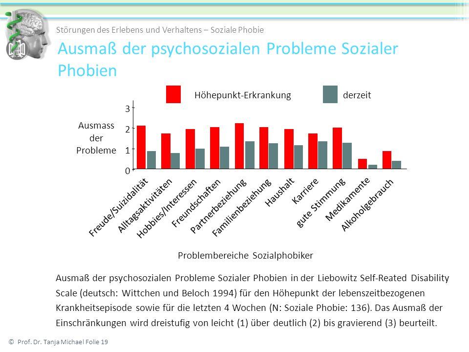 Ausmaß der psychosozialen Probleme Sozialer Phobien
