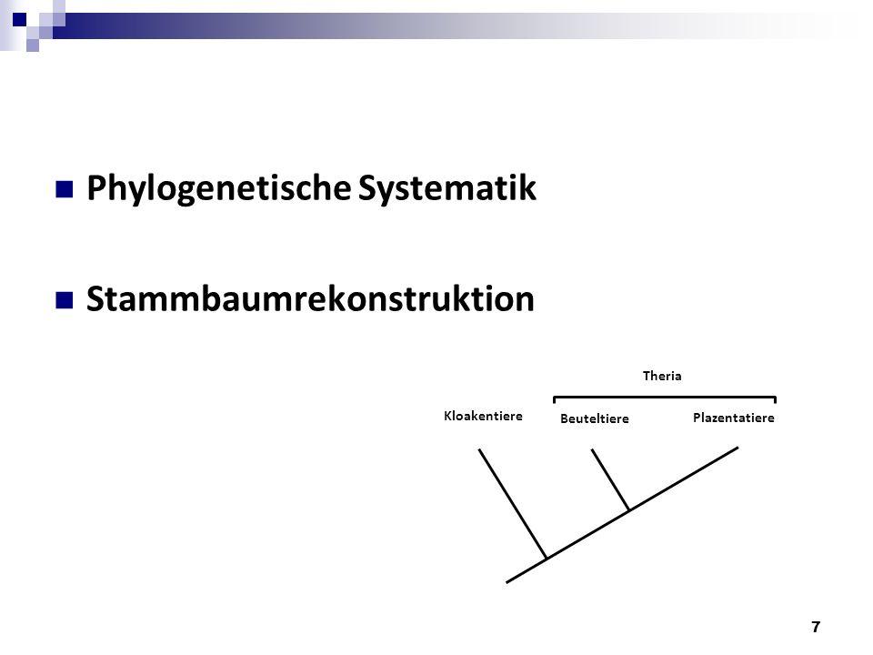 Phylogenetische Systematik Stammbaumrekonstruktion