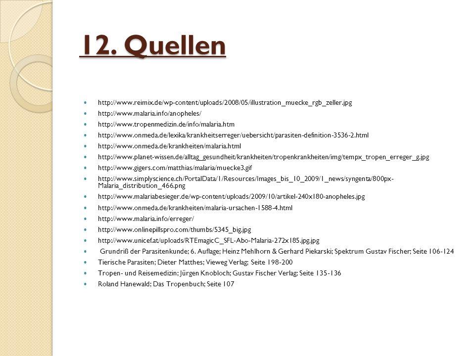 12. Quellen http://www.reimix.de/wp-content/uploads/2008/05/illustration_muecke_rgb_zeller.jpg. http://www.malaria.info/anopheles/