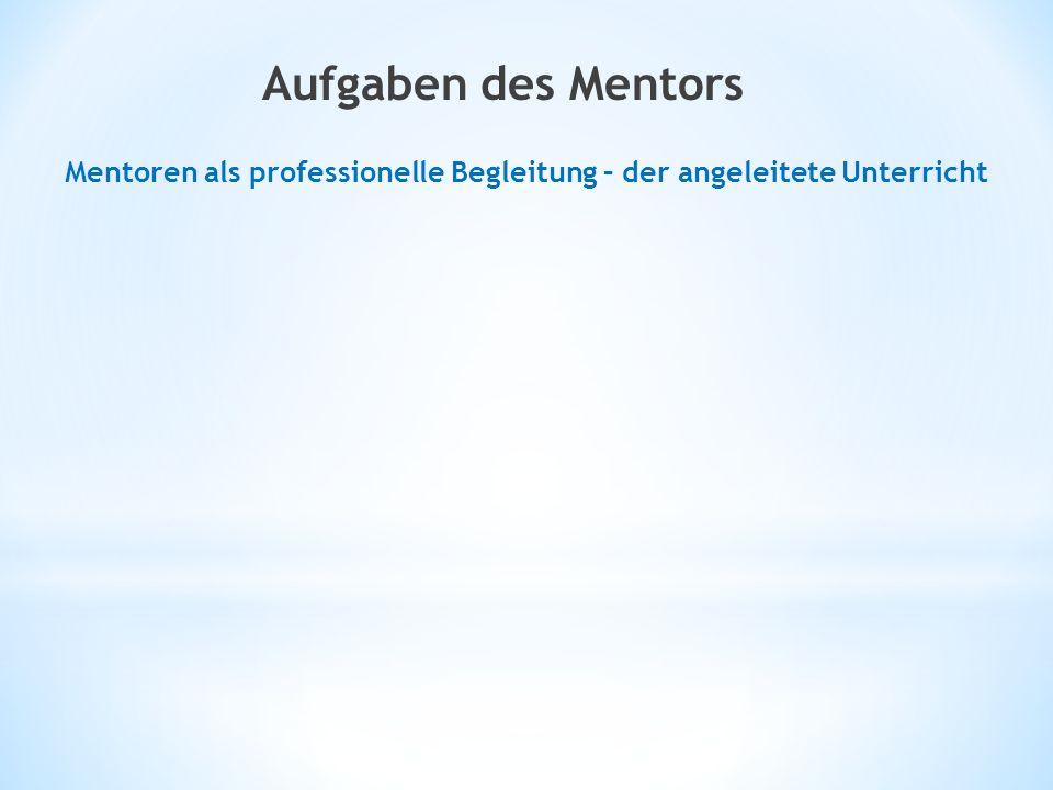 Mentoren als professionelle Begleitung – der angeleitete Unterricht