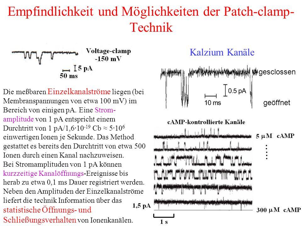 Empfindlichkeit und Möglichkeiten der Patch-clamp-Technik