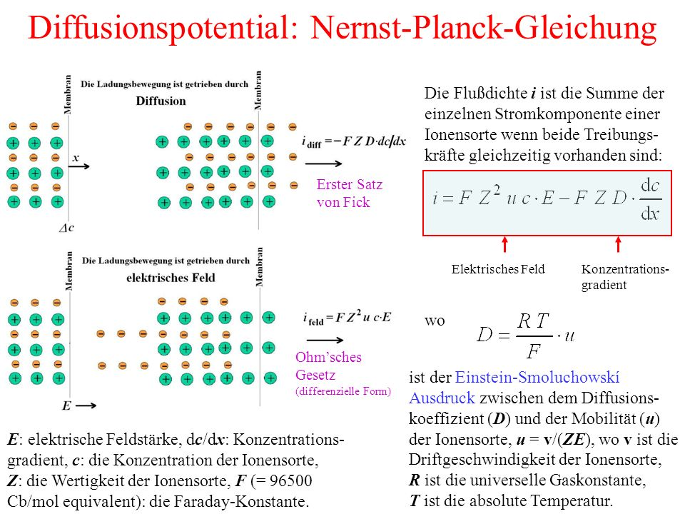 Diffusionspotential: Nernst-Planck-Gleichung