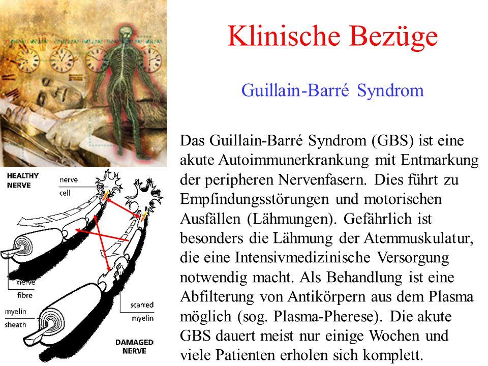 Klinische Bezüge Guillain-Barré Syndrom