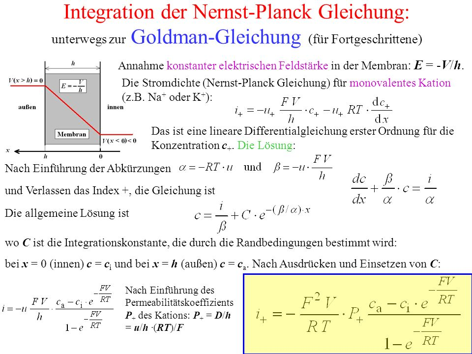 Integration der Nernst-Planck Gleichung: unterwegs zur Goldman-Gleichung (für Fortgeschrittene)