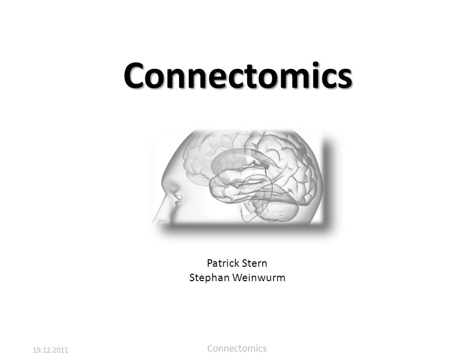 Connectomics Patrick Stern Stephan Weinwurm