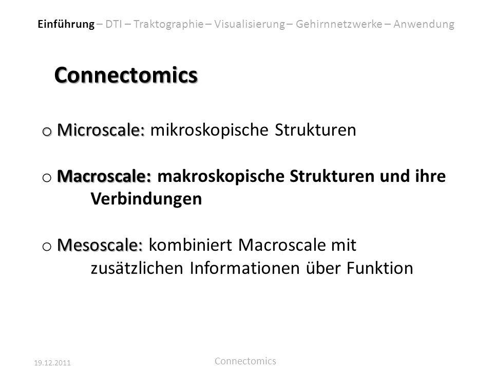 Connectomics Microscale: mikroskopische Strukturen