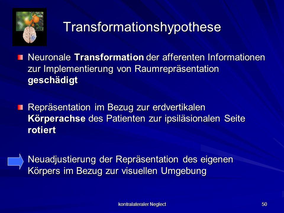 Transformationshypothese