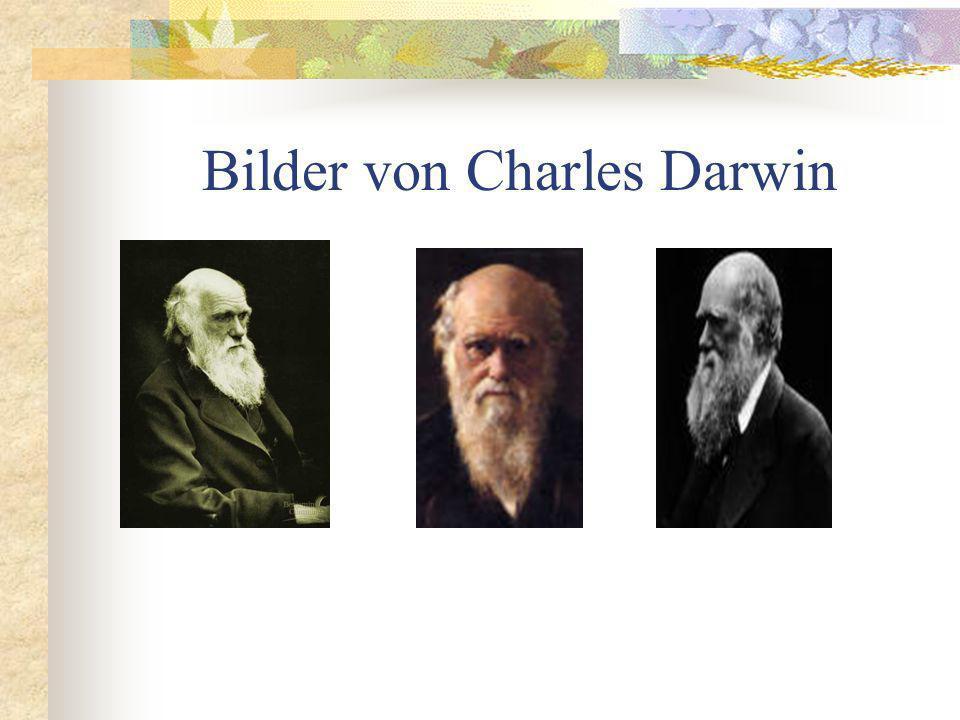 Bilder von Charles Darwin