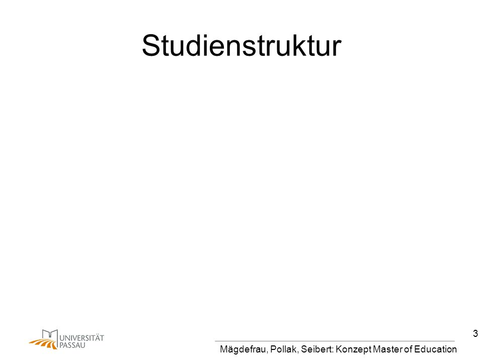 Studienstruktur Mägdefrau, Pollak, Seibert: Konzept Master of Education