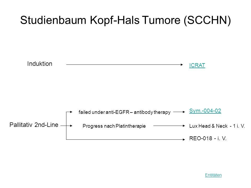 Studienbaum Kopf-Hals Tumore (SCCHN)