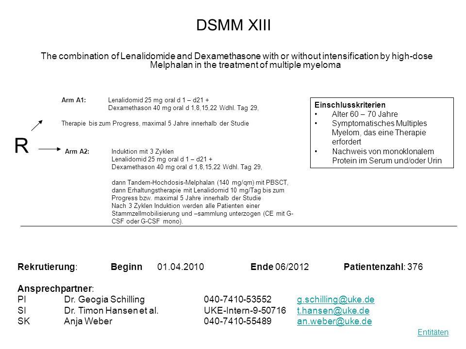 DSMM XIII