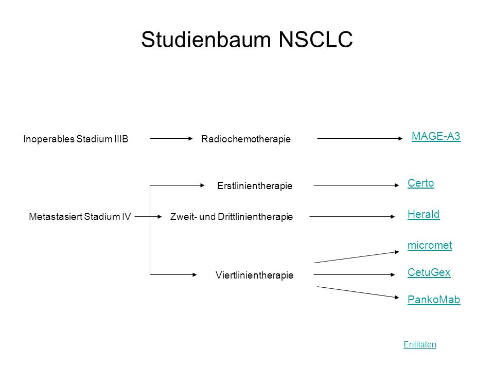 Studienbaum NSCLC MAGE-A3 Certo Herald micromet CetuGex PankoMab