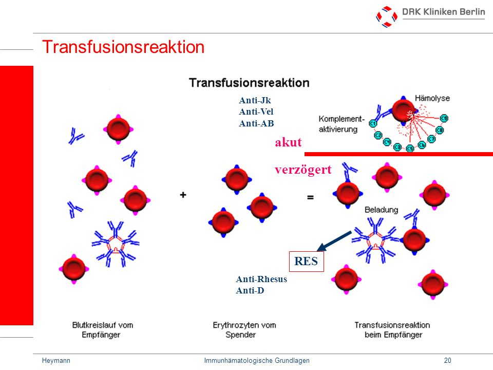Transfusionsreaktion