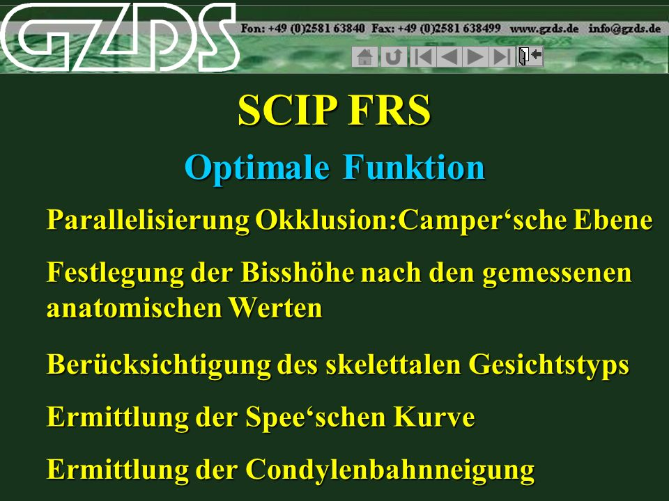 SCIP FRS Optimale Funktion