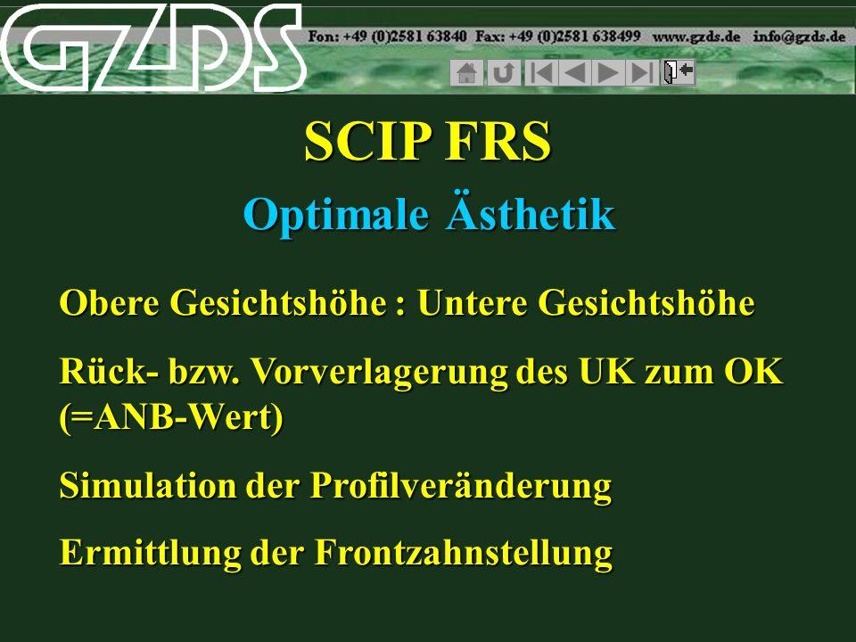 SCIP FRS Optimale Ästhetik Obere Gesichtshöhe : Untere Gesichtshöhe