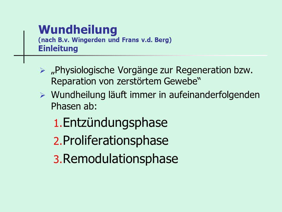 Wundheilung (nach B.v. Wingerden und Frans v.d. Berg) Einleitung