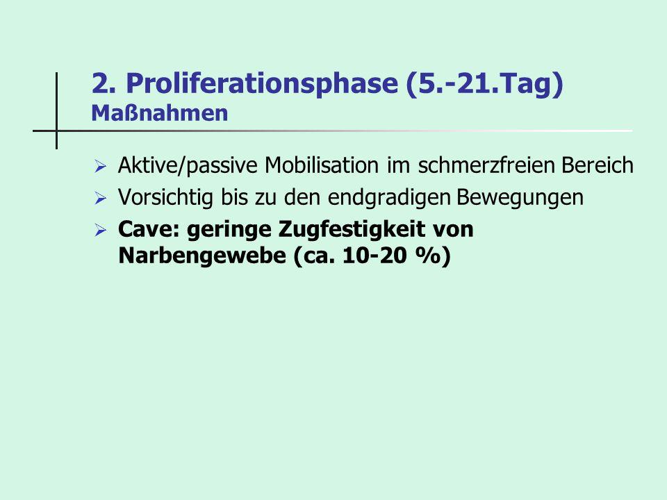 2. Proliferationsphase (5.-21.Tag) Maßnahmen