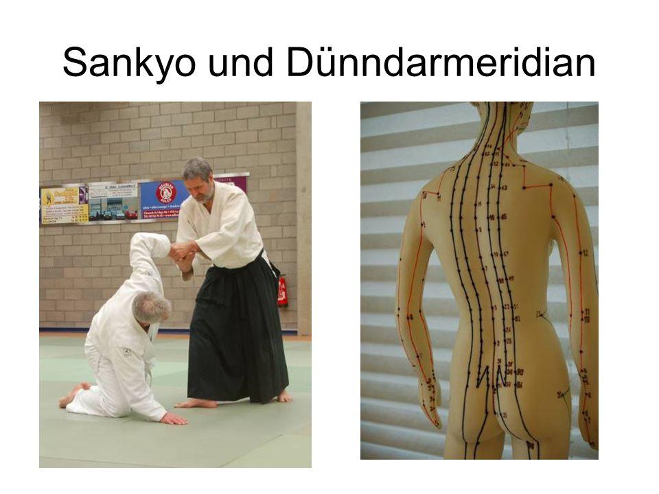 Sankyo und Dünndarmeridian