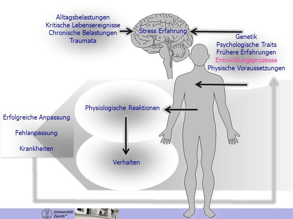 Kritische Lebensereignisse Chronische Belastungen Traumata