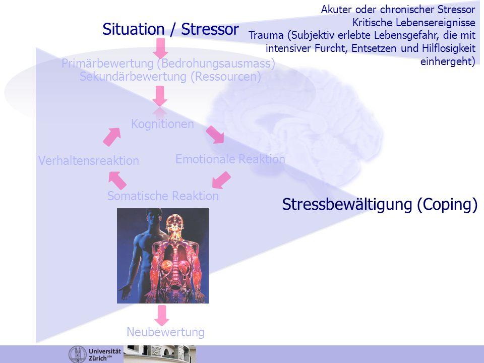 Stressbewältigung (Coping)