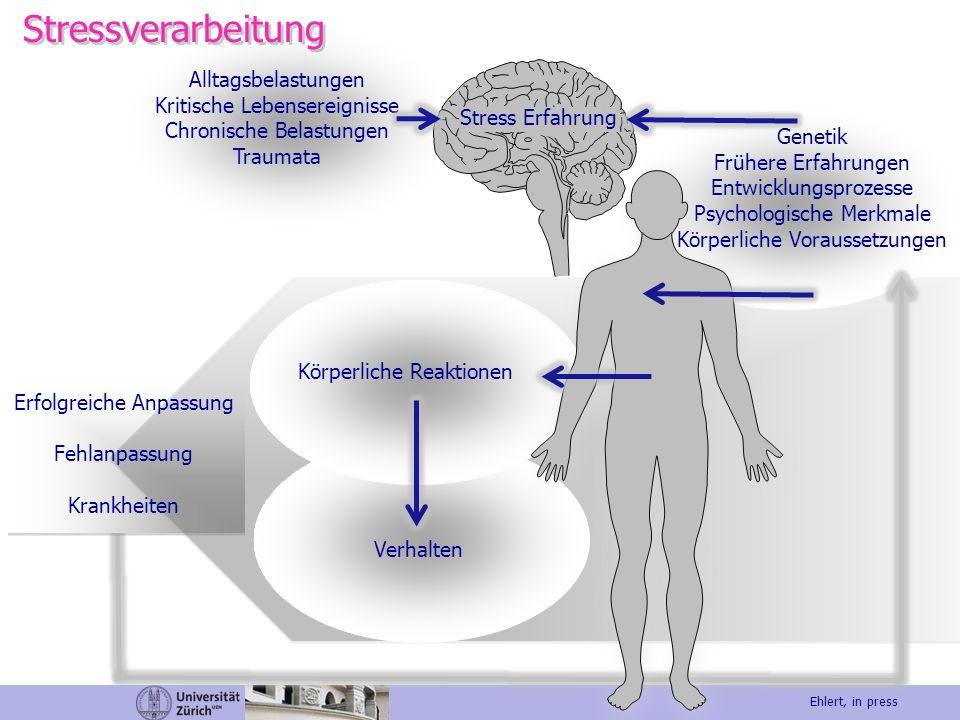 Stressverarbeitung Alltagsbelastungen Kritische Lebensereignisse