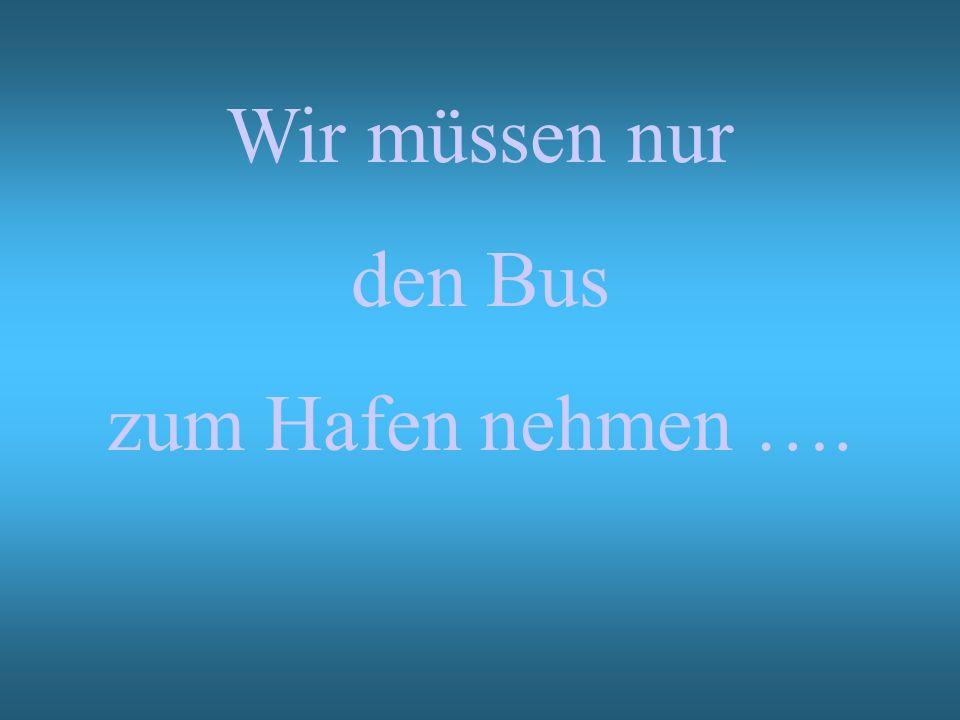 Wir müssen nur den Bus zum Hafen nehmen ….