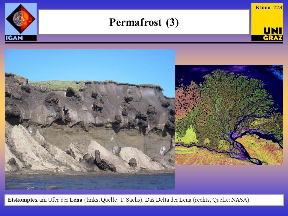 Klima 223 Permafrost (3) Eiskomplex am Ufer der Lena (links, Quelle: T.